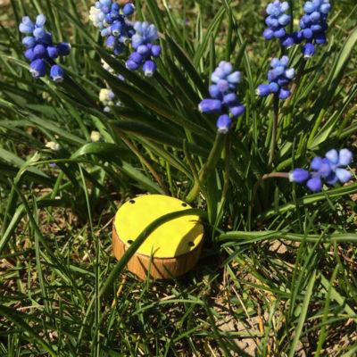 Żółta gałka do mebli by DOT Manufacture - podróże gałek